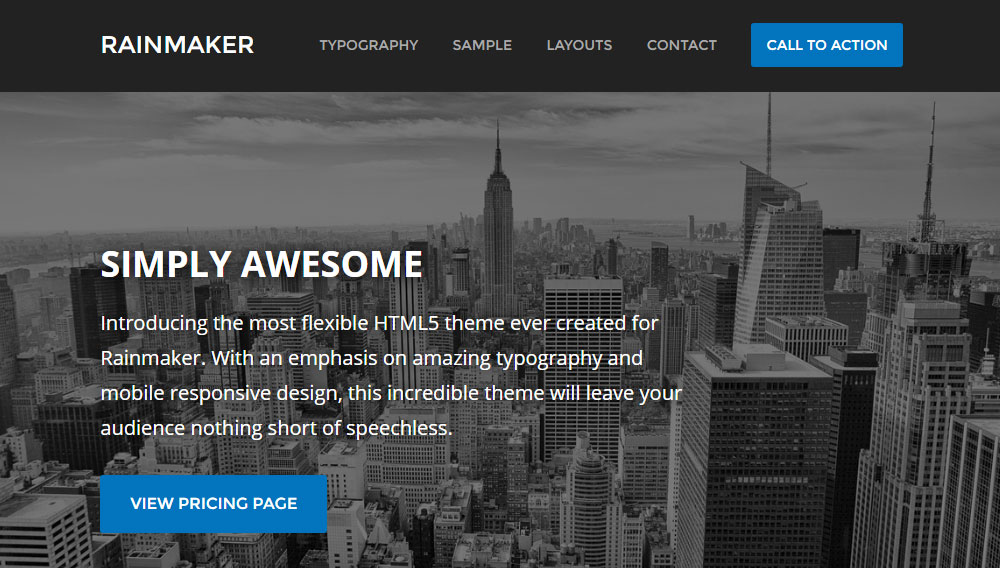 Rainmaker Review Theme Preview