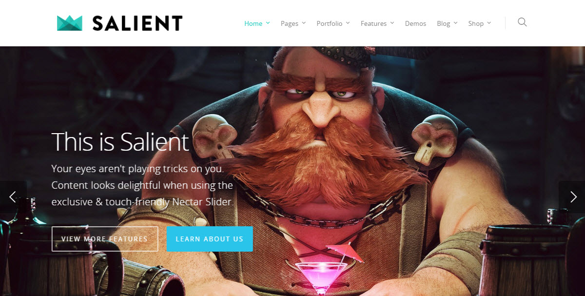 Salient Popular Multi-Purpose WordPress Theme