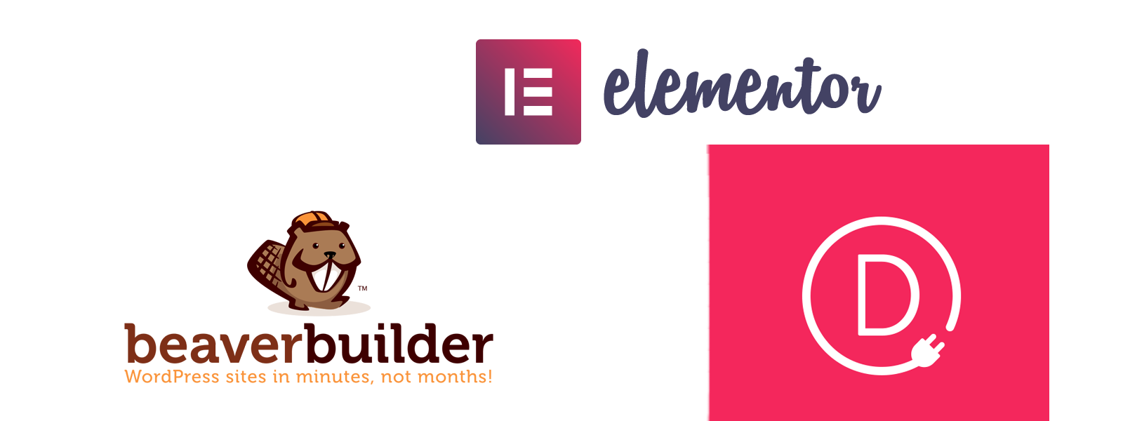 Divi Builder, Beaver Builder or Elementor WordPress Plugins