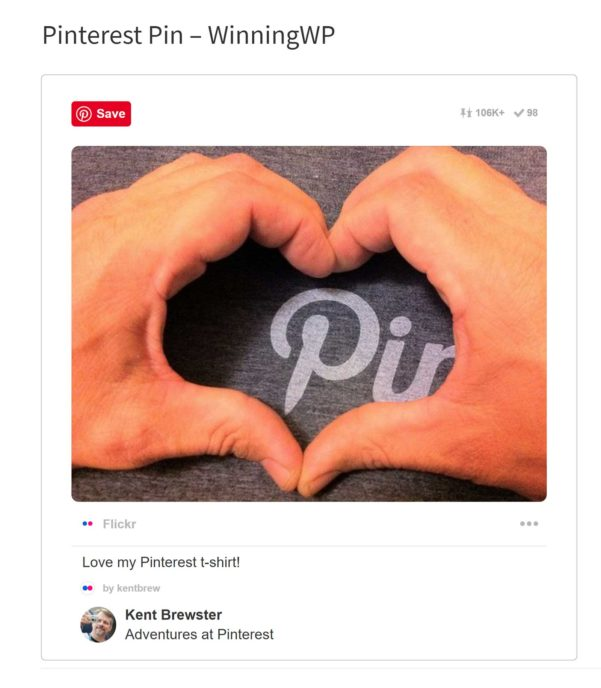 Pinterest Pin Website Example